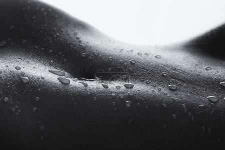 Bodyscape of a nude woman with wet stomach and back lighting art