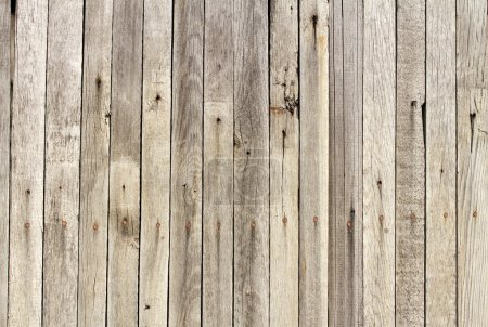 Photo for Grunge Wood panels for background - Royalty Free Image