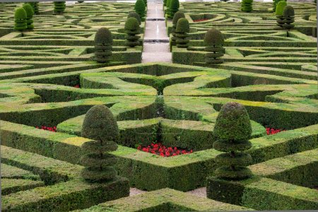Splendid, decorative gardens at castles in France