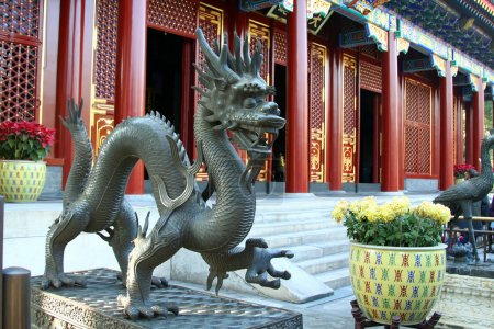 dragon in the Imperial Palace
