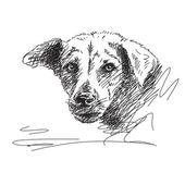 Hand drawn dog portrait