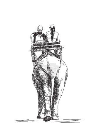 Tourists ride an elephant