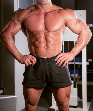 Photo for Bodybuilder posing in the gym - Royalty Free Image