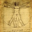 Close up of Old anatomy drawings by Leonardo Da Vi...