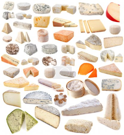 Composition of various cheeses in front of white b...