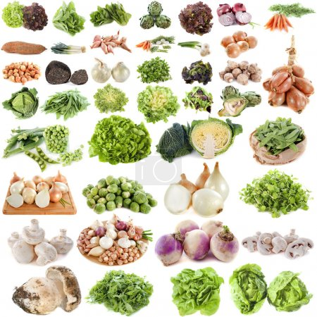 Photo for Group of vegetables in front of white background - Royalty Free Image