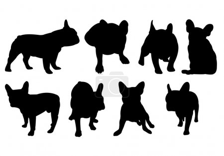 Vector silhouettes of french bulldogs