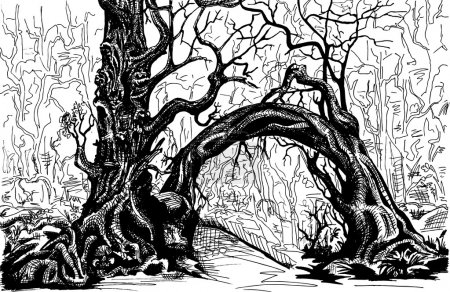 Illustration for Thicket. Felled trees. Drawing black and white. - Royalty Free Image