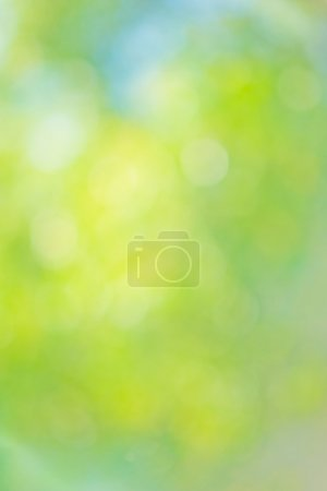 Beautiful natural bokeh