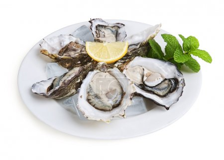 Photo for Half a dozen oysters on white plate with ice and lemon isolated on white background - Royalty Free Image