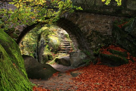 Photo for The secret garden – landscaping. Old stone bridge and stairs - Royalty Free Image