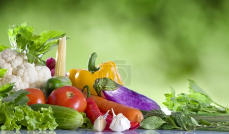 Close up view of nice fresh vegetables on green summer back