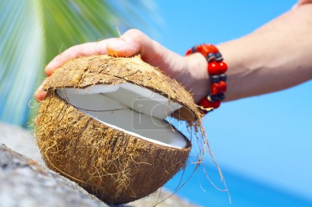 View of a woman opening big coconut in tropical environment