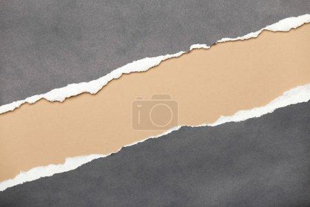 Foto de Rasgado de papel gris con espacio lechoso para tu mensaje - Imagen libre de derechos