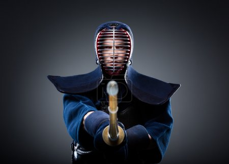 Portrait of kendo fighter with bokuto. Japanese ma...