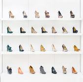 Showcase with female shoes