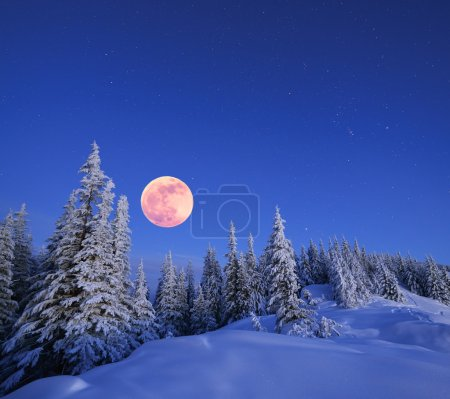Photo for Winter landscape in the mountains at night. A full moon and a starry sky. Carpathians, Ukraine - Royalty Free Image