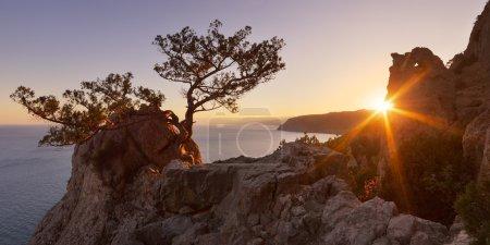 Photo pour Rayons du soleil couchant dans une forêt de montagne. vue de soirée du Cap de la mer. côte méridionale de la Crimée, ukraine, europe - image libre de droit