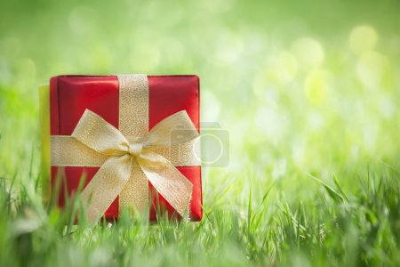 Present on grassy background
