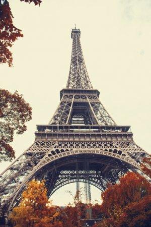Paris. Gorgeous wide angle view of Eiffel Tower in autumn season