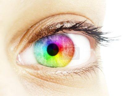 Rainbow color in a beautifull eye