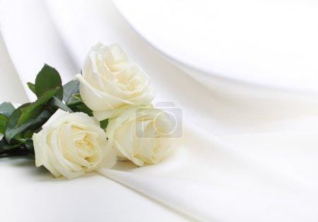 Photo pour Bouquet de roses sur soie - image libre de droit