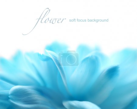 Photo for Soft focus flower background with copy space. Made with lens-baby and macro-lens. - Royalty Free Image