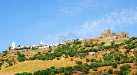 Landscape of Monsaraz and castle