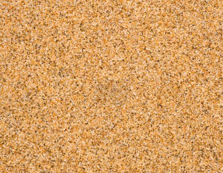 Photo pour Fond sable - image libre de droit