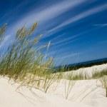 Sand Dunes...
