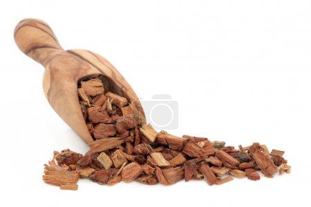 Oak Bark Herb