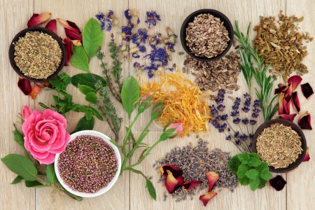 Herbal medicine selection also used in pagan witch...