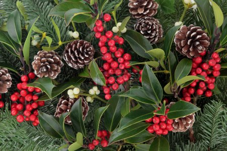 Photo for Winter and christmas background with red holly berry clusters, mistletoe, spruce fir leaf sprigs and pine cones. - Royalty Free Image