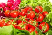 Zralé cherry rajčata na bílém pozadí