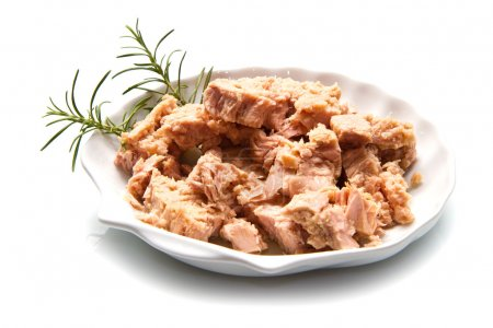 tuna fish in oil, canned food.