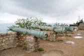 Fortified coast of St Tropez