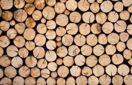 Photo for Pile of wood logs ready for winter - Royalty Free Image
