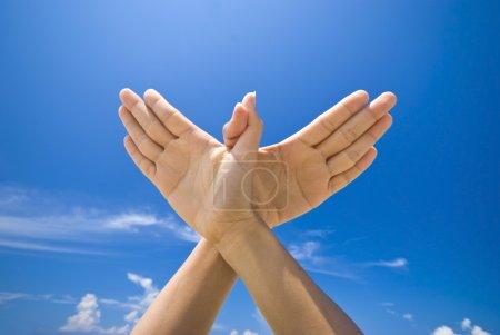 Photo pour Symbolisant la main colombe signe - image libre de droit