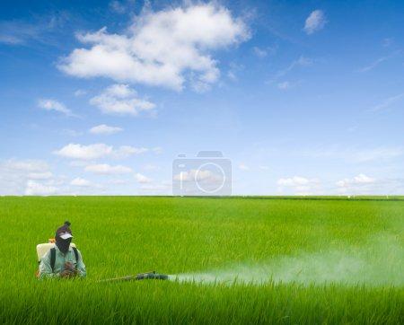 Photo pour Pulvérisation de pesticides par les agriculteurs - image libre de droit