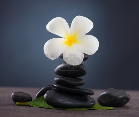 Stacked hot stones for massage spa and frangipani with green bac