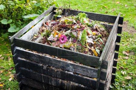 Photo pour Poubelle à compost dans le jardin - image libre de droit