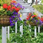 Hanging flower baskets on summer patio...
