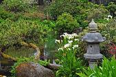 Lush green asian garden