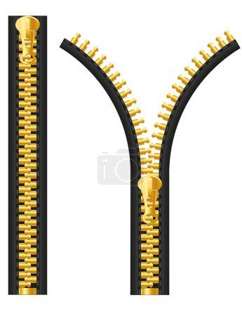 Zipper vector illustration