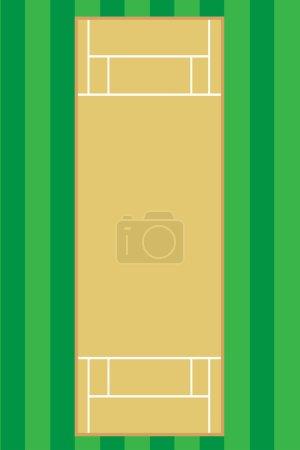 criket pitch