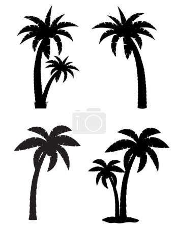 palm tropical tree set icons black silhouette vector illustratio