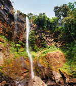 Sacred waterfall in a deep canyon of tropical forest