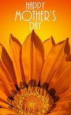Blahopřání ke dni matek s oranžovou květinou
