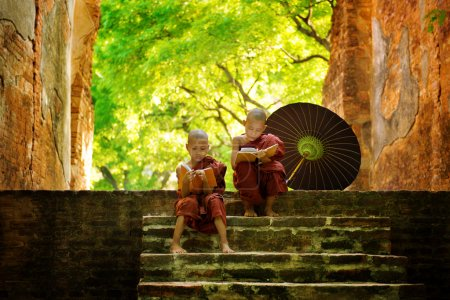 Photo for Young Buddhist monk reading outdoors, sitting outside monastery, Myanmar. - Royalty Free Image