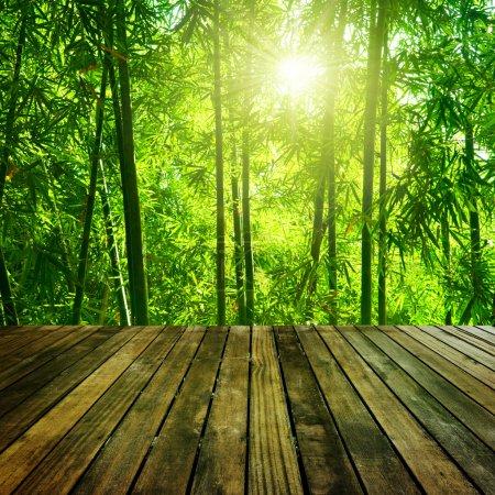 Photo pour Plate-forme en bois et forêt de bambou asiatique avec le soleil du matin. - image libre de droit